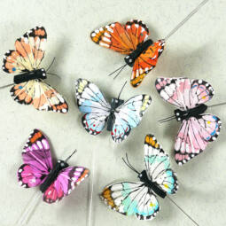 Pillangó, tarka, 5,5 cm, 1 db