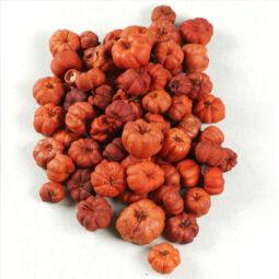 Száraztermés - Lilliputi tök, narancs, 20 g