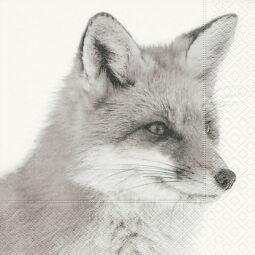 Szalvéta - Téli róka (k)