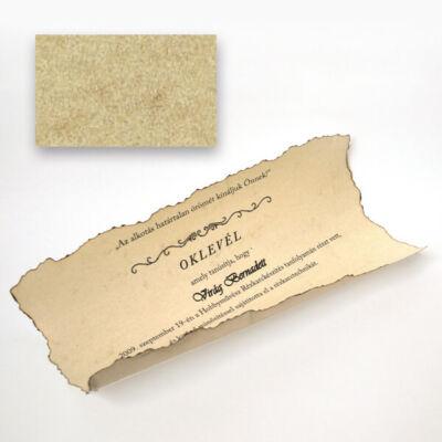 Elefántbőr papír, A4, 110 g - 70, bőrszín