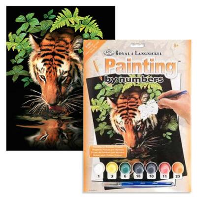 Számozott kifestő készlet, akrilfesték+ecset, 22x30 cm - Szomjas tigris