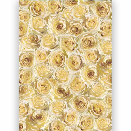 Transzparens papír, A4 - Fehér rózsák