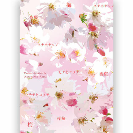 Transzparens papír, A4 - Hanami