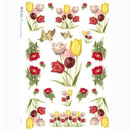 Rizspapír - tulipán