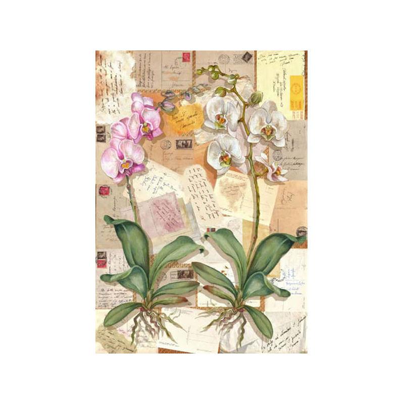 Esprimo decoupage papír - orchidea